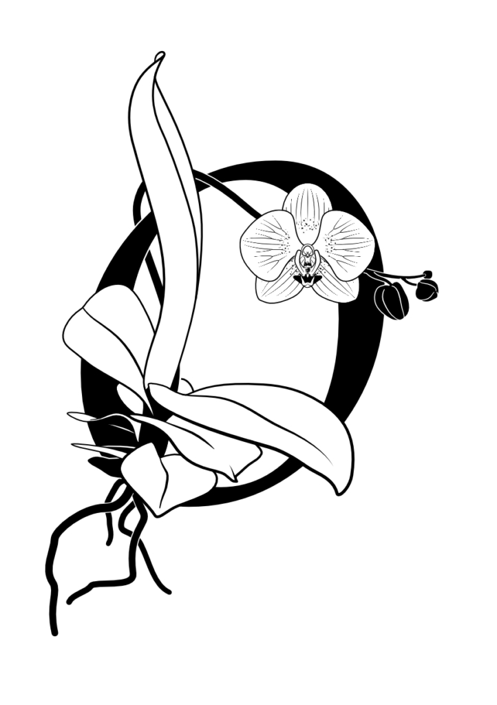 botanical black&white vector illustration