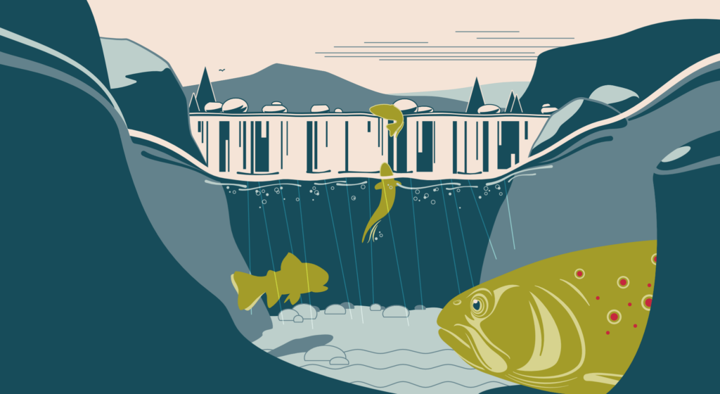 Graphical vector visualization that illustrates the stages of fishes to overcome natural obstacles
